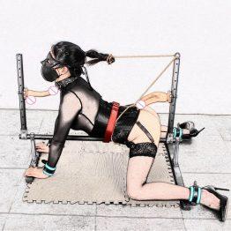 Restraint Shelf Slave