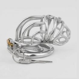 Forced Chastity Cage